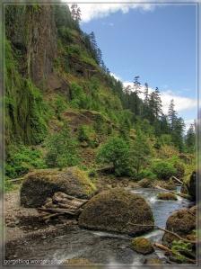 Tanner Creek